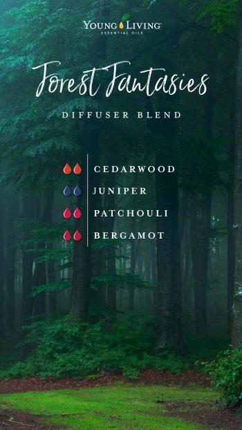 Forest fantasies diffuser blend