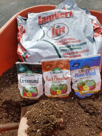 DIY Seedling Starter Mix