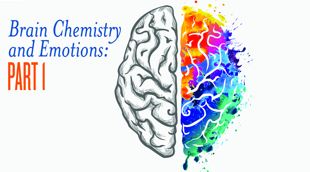 Brain Chemistry and Emotions. Can essential oils help?