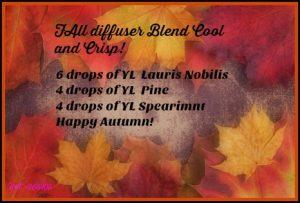 fall-diffuser-blend-cool-and-crisp