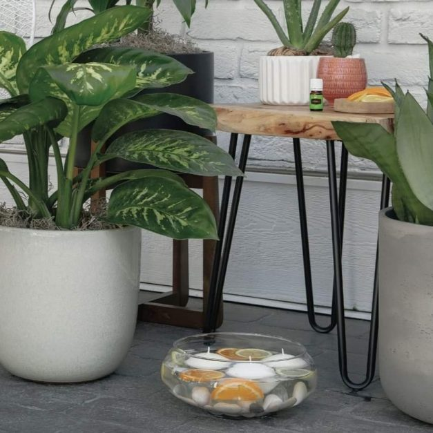 Keep those outdoor pest away….in perfect style!