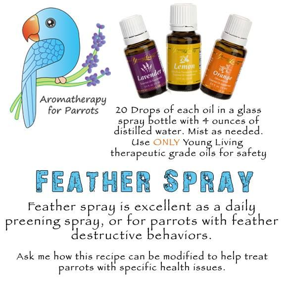 Aromatherapy Feather Spray!