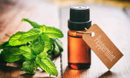 Peppermint has been used for 1000's of years of natural healing!  What we can learn from ancient times now!
