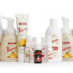 Young Living Thieves Starter Kit