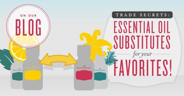 All out? Perfect EO substitutes