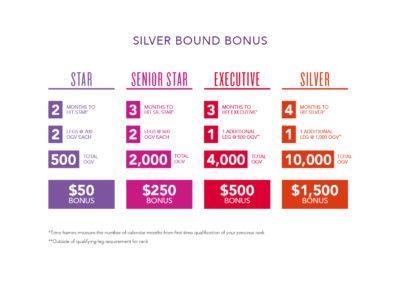 Silver Bound Program
