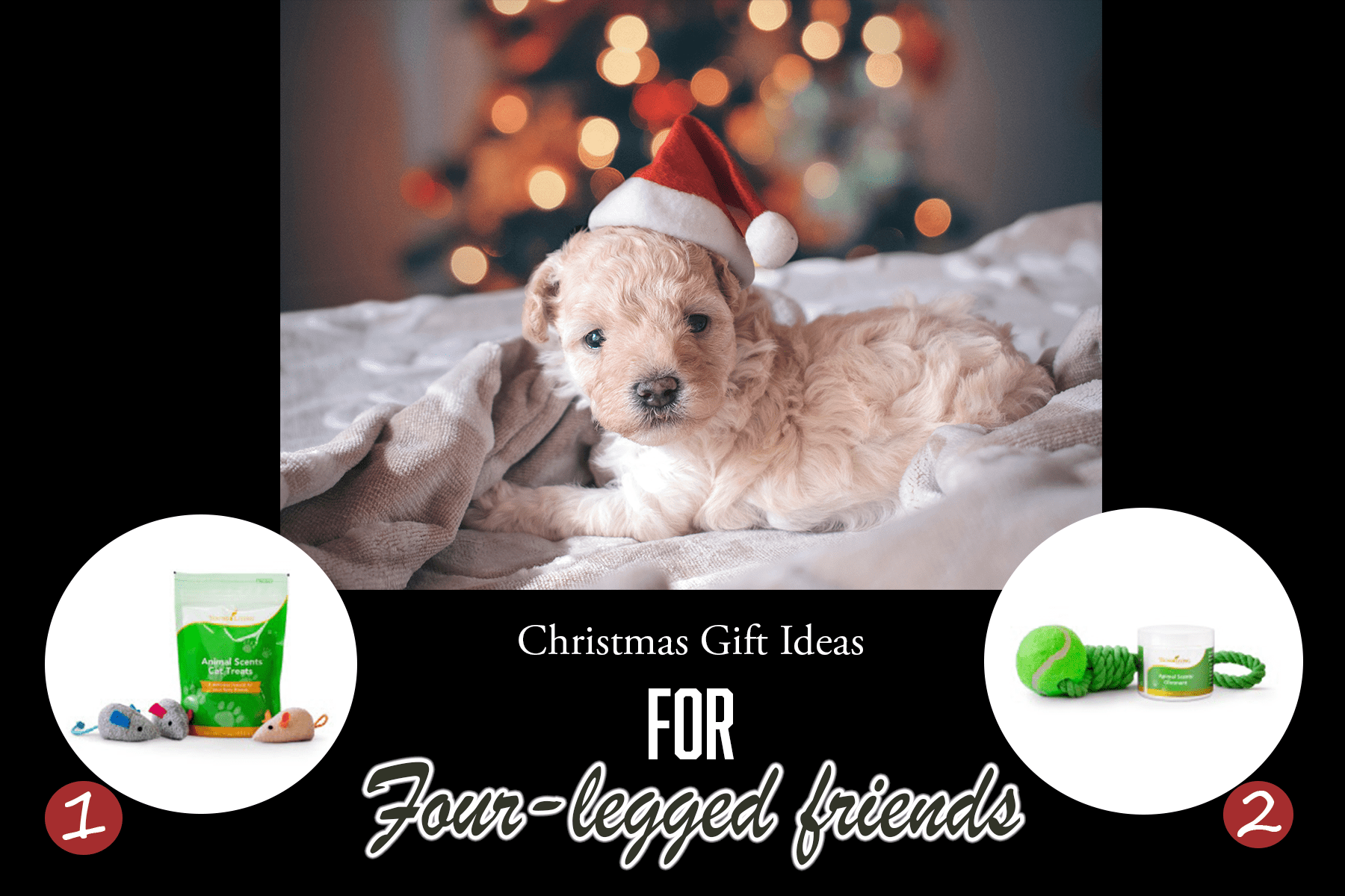 2018 Christmas Gift for cats and dogs