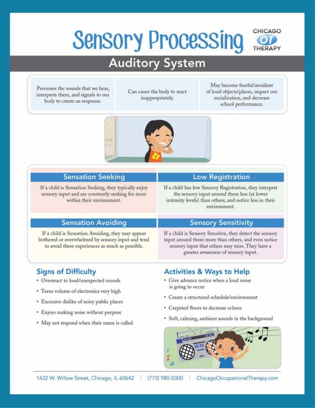OT Education: Auditory System Sensory Processing
