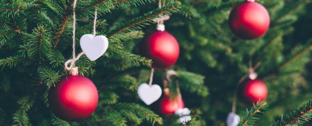 Bringing Joy to Your Christmas Holidays!